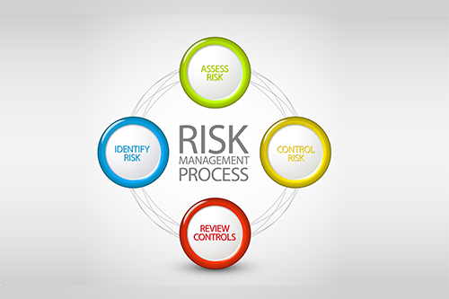 Risk Management and Process